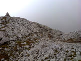 Via Normale Sass Dei Gnèi (Agnèr) - La cima