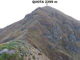 Via Normale Piancone Basso - Panorama di vetta, verso N (parte intermedia della cresta S del Monte Legnone)