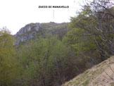 Via Normale Zucco di Manavello (variante) - In salita