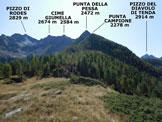 Via Normale Dosso Billi - Panorama di vetta, verso S