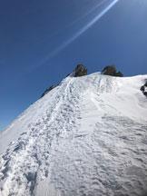 Via Normale Gross e Hinter Fiescherhorn - La facile cresta nevosa dell'Hinter Fiescherhorn