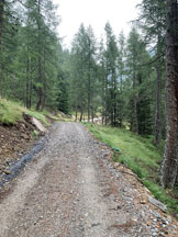 Via Normale Adula o Rheinwaldhorn via Malvaglia - La sterrata che sale da Cusiè