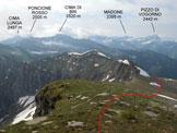 Via Normale Cima di Gagnone - Panorama di vetta, verso SE