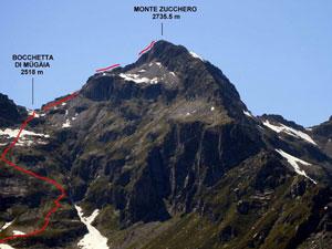 Via Normale Monte Zucchero - da Est