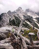 Via Normale Monte Petorgnon - Cima della Gardesana