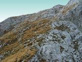 Via Normale Cimon della Bagozza - Il pendio di salita alla cima