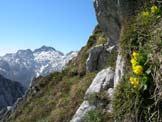 Via Normale Monte I Muri - Gruppo del Cavallo