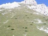 Via Normale Cima Montanel - La sella e la durissima salita