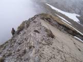 Via Normale Tofino - Verso la cima