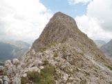 Via Normale Pale del Fop - La cima della Pala del Fop dalla Forc. del Fop