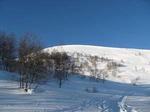 Via Normale Alpe di Rittana