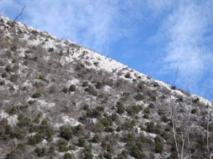 Via Normale Monte Pizzocolo - Cresta SE