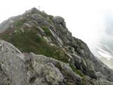 Via Normale Monte Tre Confini (Venerocolo) - La piccola croce in cima