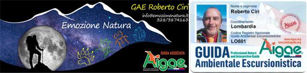 GAE Roberto Ciri