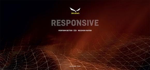 Salewa-responsive