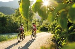 Mountain bike fra i boschi della Carinzia