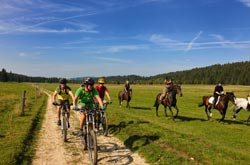 Mountain bike e cavallo in Svizzera