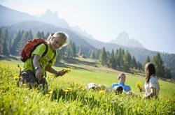 Escursione in Val d'Ega