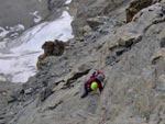 Cervino - Cenge sotto le rocce della Cresta di Coq